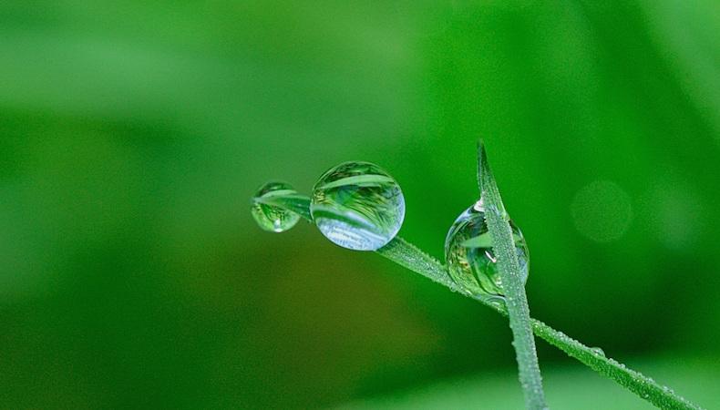 Der Preis des ökologischen Druckens