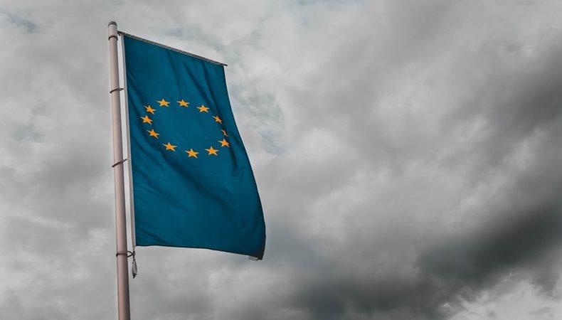 The European Union and Environmental Impact Mitigation