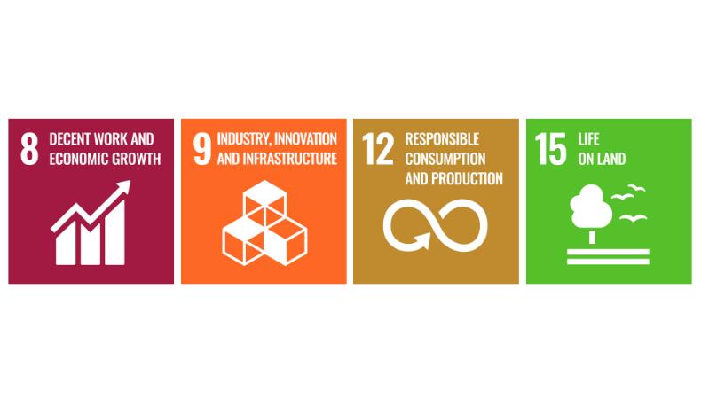 Die UN-SDGs und Ressourcennutzung
