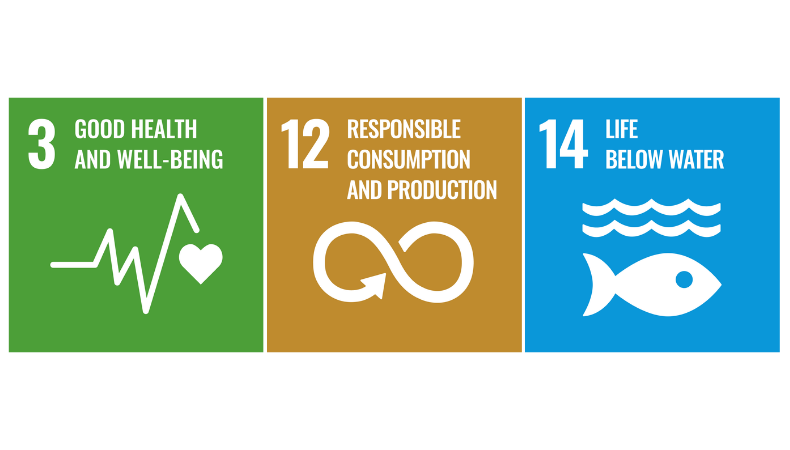 The UN SDGs and chemicals, air and water