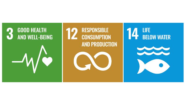 Los ODS de la ONU y los productos químicos, el aire y el agua