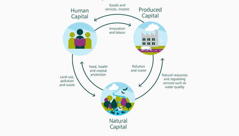 Economics, industry and biodiversity