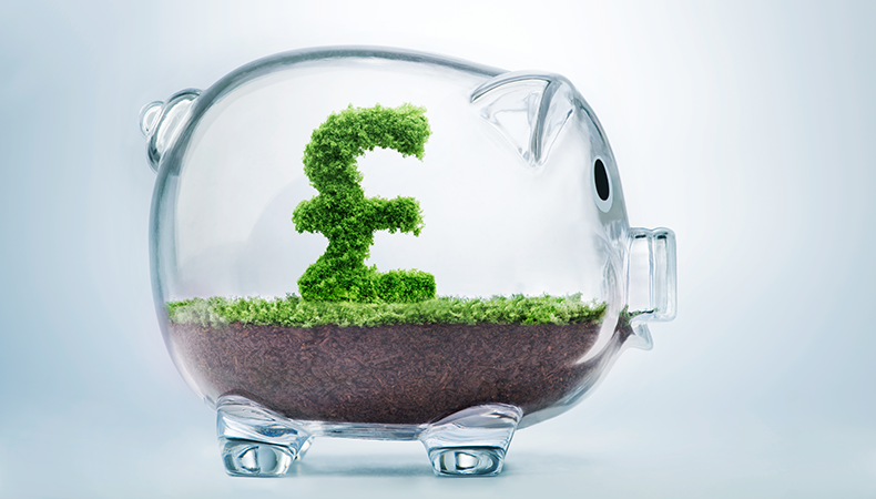 Showcase sustainability – and future-proof your business